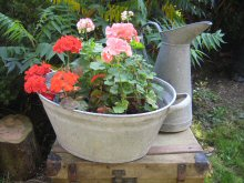 galvanised plant containers
