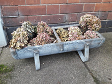 Galvanised animal feeding trough, ideal plant container. £40