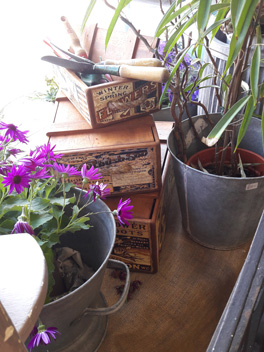 Our shop window with flower boxes and galvanised ware